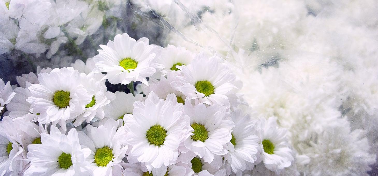 故人を偲ぶ想いを込めて、最期のお別れの時間をお花で、はなやかに。